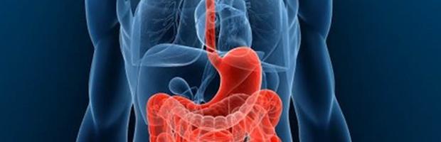 gastroenterología y hepatología