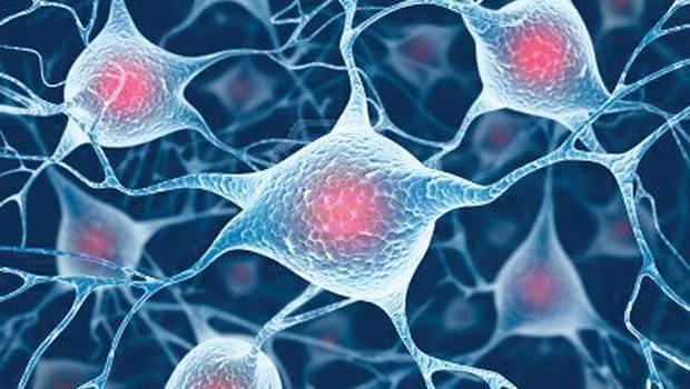 consulta medicina regenerativa madrid centro